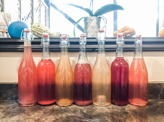 Fermented Soda Flavours (from left to right)